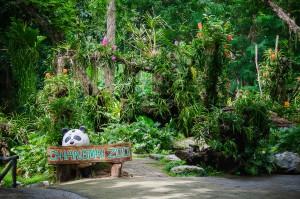 Chiang Mai Zoo Sign (Зоопарк Чианг Мая.)