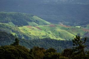 Doi Inthanon Viewpoint View (Самая высокая точка Таиланда. Doi Inthanon.)