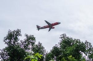 Plane (Wat Suan Dok, Чианг Май, Таиланд.)