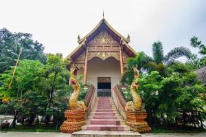 Wat Doi Ngam Muang Vihan (Wat Doi Ngam Muang и котики.)
