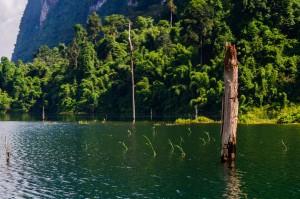 Cheo Lan Lake Views 08 (Рафт-хаус Putawan и озеро Чео Лан.)