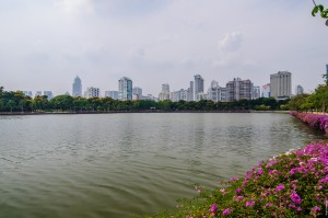 Lake In Benjakiti Park (Парк Benjakiti и улицы Бангкока.)