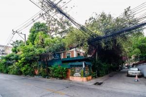 Streets Of Bangkok Hotel Hidden In Bush (Парк Benjakiti и улицы Бангкока.)