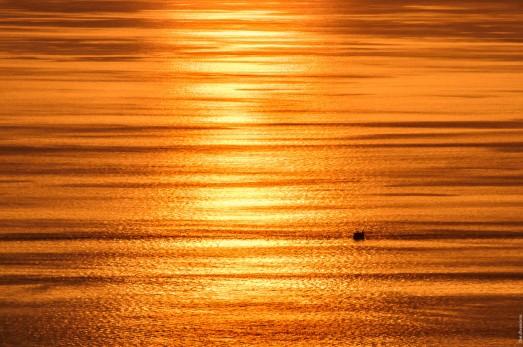 Золотое море.