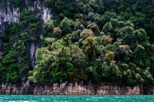 Побережье озера Чао Лан (Тайский Гуйлинь и красоты озера Чао Лан.)