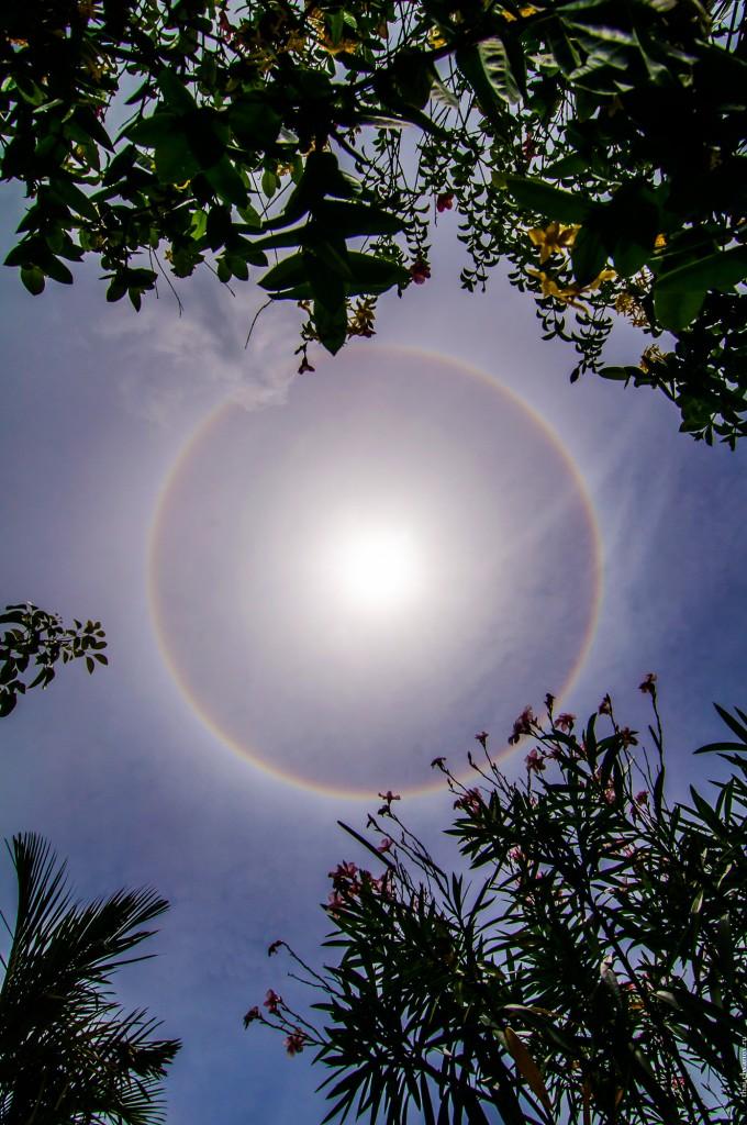 Гало вокруг солнца, оптический феномен (Радужное гало вокруг солнца. Оптический феномен.)