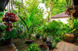 Our House In Thailand 02 (Дом в котором я живу.)