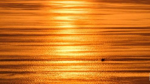 Золотой закат